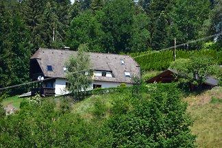 Schwarzwaldtalblick