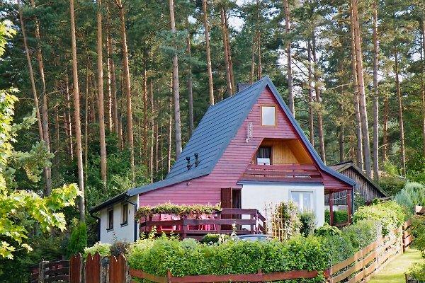Masurienhaus en Kobylocha - imágen 1