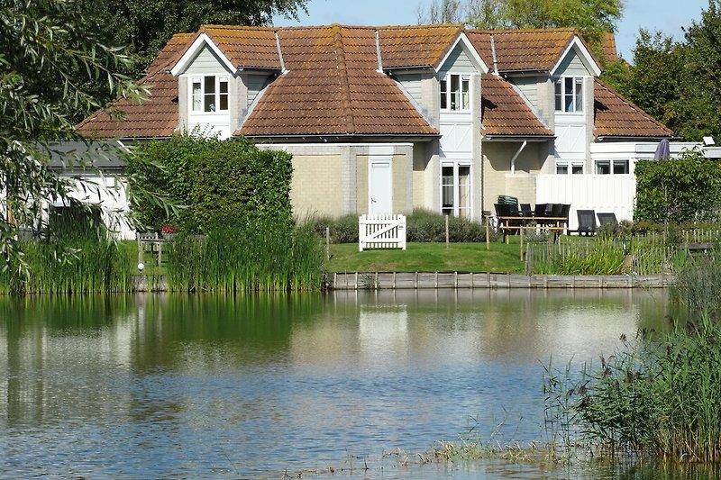 Blick vom Teich