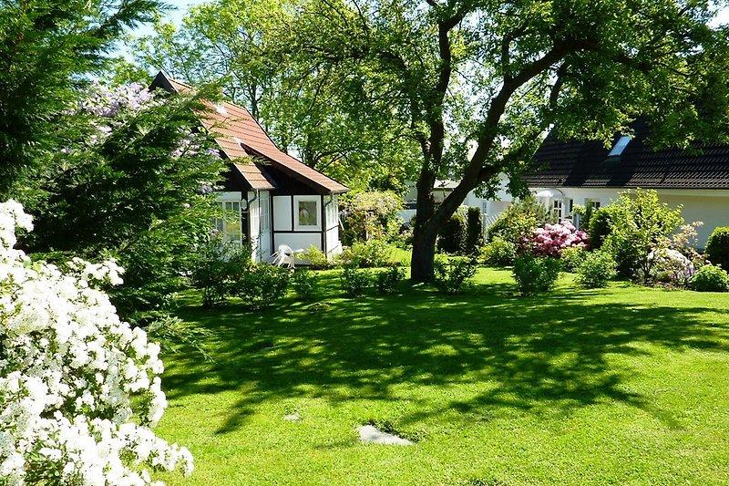 Das kleine Landhaus inmitten des großen Gartens