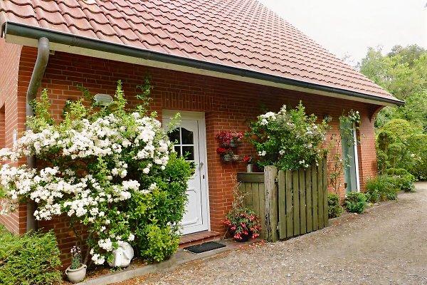Ferienhaus-Silbersee **** à Westerholt - Image 1