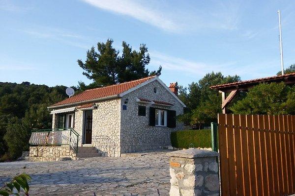 Ferienhaus Stella Maris  à Jezera - Image 1