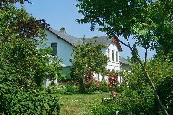 Bauernhof Familie Schmidt in Esgrus - Bild 1