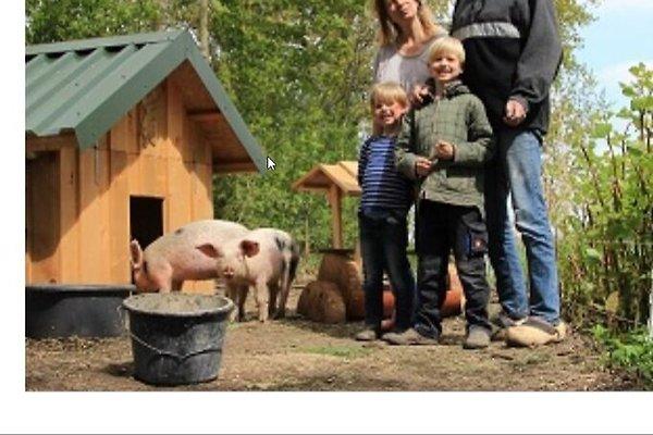 Familie H. Kuhlmann