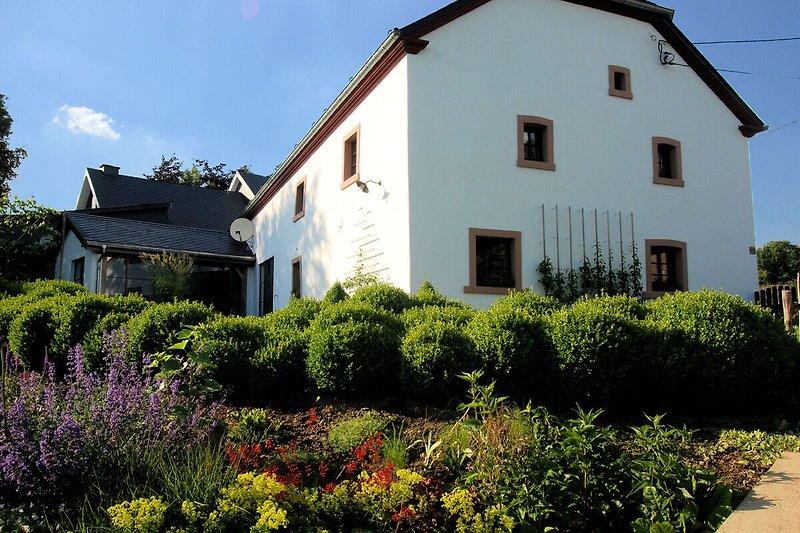 Widok na dom (lato)