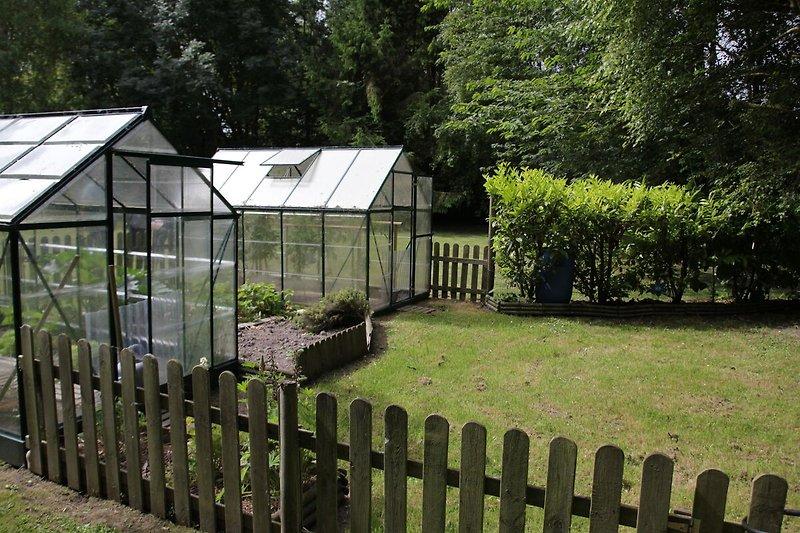 Garten (Sommer)