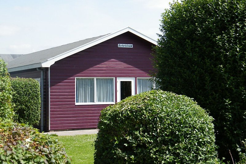 Holiday Home Exterior (summer)