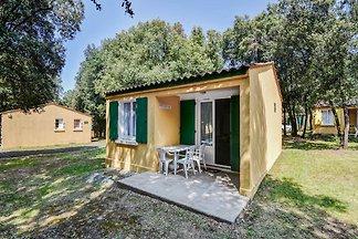 Wohlhabendes Ferienhaus in Saint-Savinien mit...
