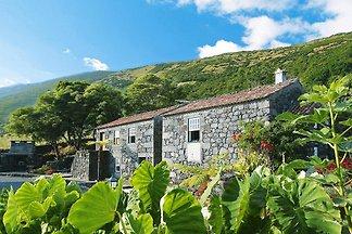Ferienhäuser Adegas do Pico in Prainha