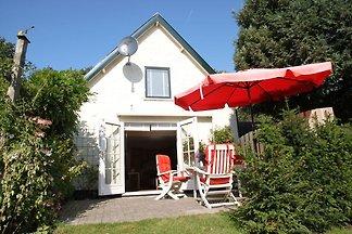 Gemütliches Ferienhaus in Schoorl in Waldnähe