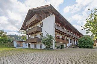 Schönes Appartement in Skigebietsnähe in...