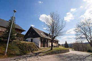 Wohnung mit Terrasse in Todtnauberg (Oberer...