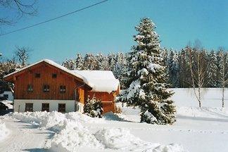 Schönes Ferienhaus in Viechtach in Waldnähe