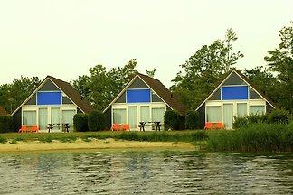 Gezellig ingericht huis met terras, direct aa...