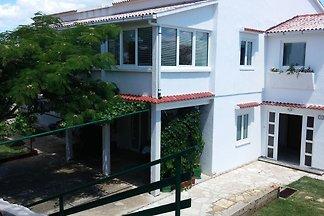 Kuća za odmor Dopust za oporavak Pag