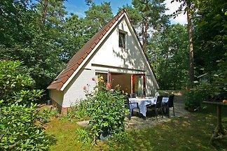 Gemütliches Ferienhaus in Nunspeet in waldnah...