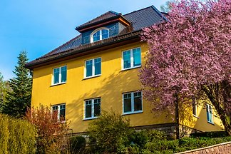 Modernes Appartement mit Sauna in Schönbrunn...