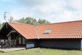 Überdachtes Ferienhaus in Lolland mit...