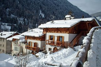 Apartment in Celledizzo with Sauna, Terrace, ...