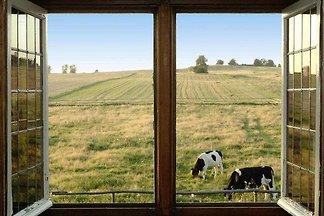 Gemauertes Cottage in Zakrzewo mit Garten und...