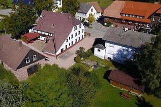 Große Dachgeschoßwohnung in Lauterbach im Sch...