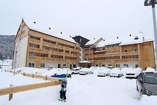 Joli appartement à Gosau Autriche près du dom...