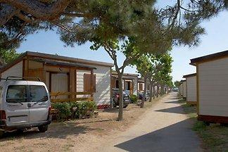 Holzchalet mit Klimanlage und Terrasse, in...