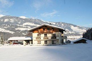 Gemütliches Haus in Hollersbach im Pinzgau na...