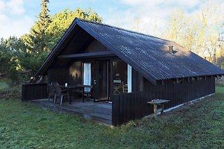 4 Personen Ferienhaus in Martofte