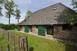 Stilvolles Bauernhaus in Nieuwleusen mit eige...