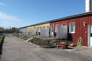 Charmante Ferienwohnung mit Garten in Wiek