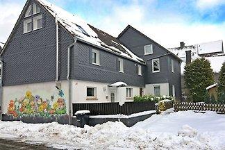 Gemütliches Ferienhaus in Usseln mit Terrasse