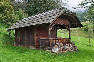 Vintage-Ferienhaus in Arriach, Kärnten mit ei...