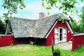 Ruhiges Ferienhaus in Norre Nebel, Jütland mi...