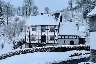Großes Ferienhaus bei Winterberg mit Garten, ...