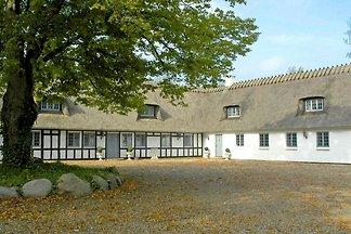 Modernes Ferienhaus mit Pool in Ronaes...