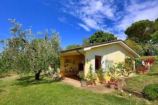 Modern Cottage in Graffignano Italy with Swim...