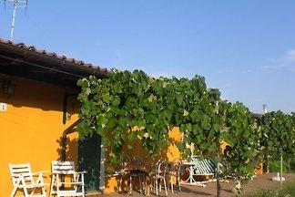 Sonniges Bauernhof-Appartement in Santa Maria...