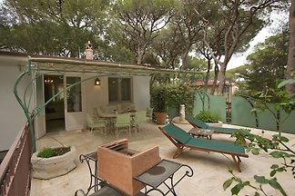 Nice Holiday Home in Marina di Castagneto Car...