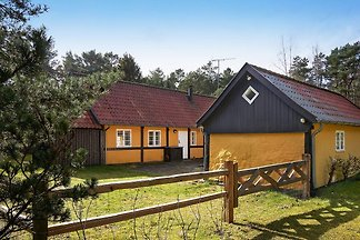 4 Sterne Ferienhaus in Aakirkeby