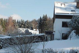 Helles Apartment in Bad Grund in Waldnähe