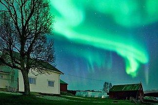 4 Sterne Ferienhaus in Kvaløya