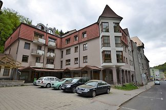 Snug Apartment in Jachymov near Ski area