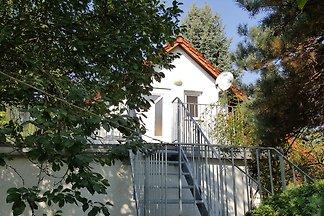 Modernes Ferienhaus mit Terrasse in Friedland...