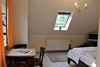 Ruim appartement in Boltenhagen nabij het...