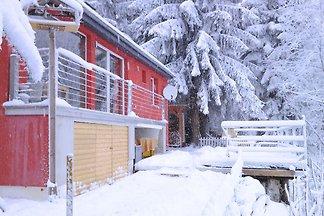Modernes Ferienhaus in Schnett mit Holzofen