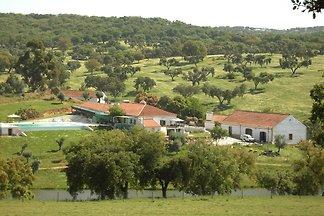 Ferienhaus Erholungsurlaub Montemor-o-Novo
