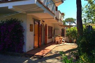 Nice holiday home in Marina di Massa near the...