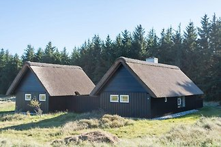 4 Sterne Ferienhaus in Pandrup