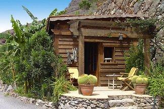 Holiday accomodations Jardín Botánico, Baranc...